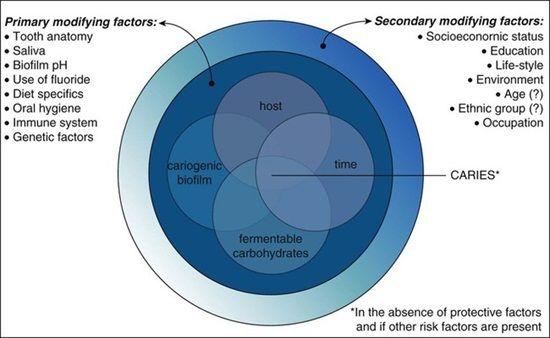 Modified Keyes-Jordan diagram As a simplified description, dental
