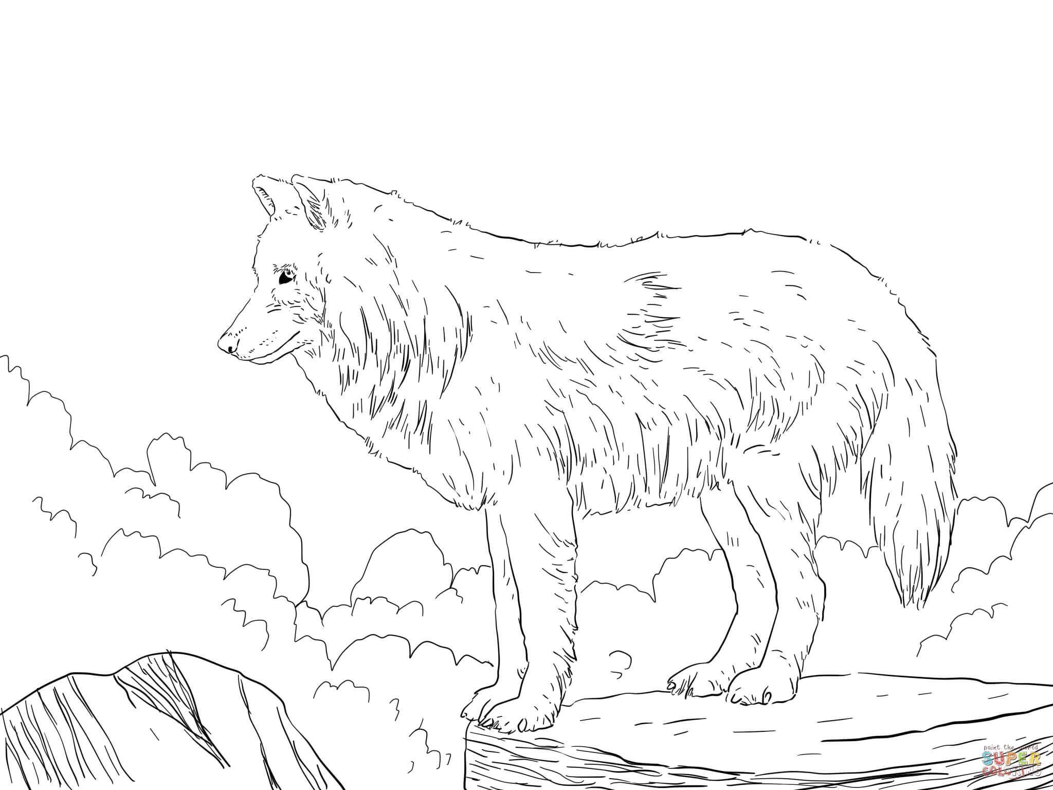 Lion Dance Coloring Pages