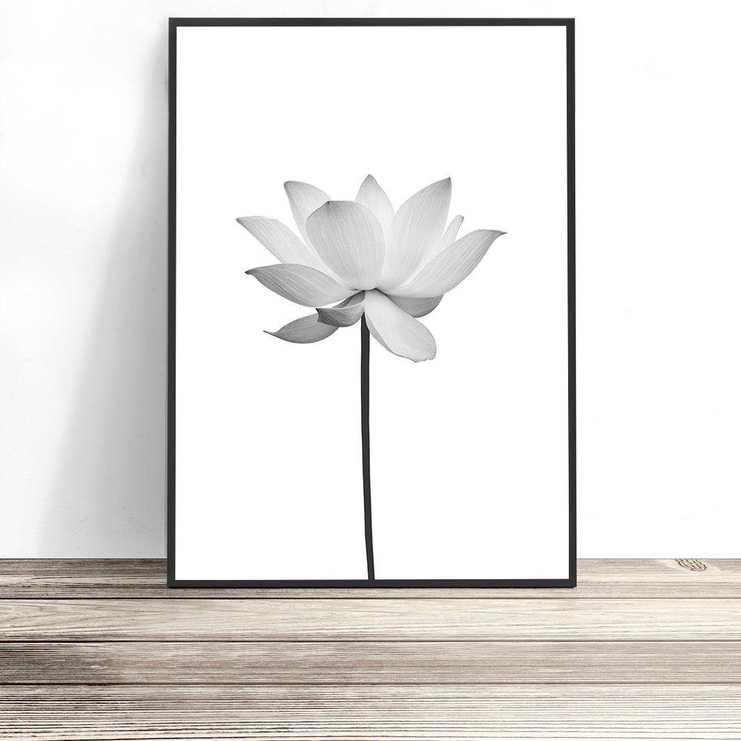 Lotus Flower Print Wall Art Prints Pinterest Lotus Flower