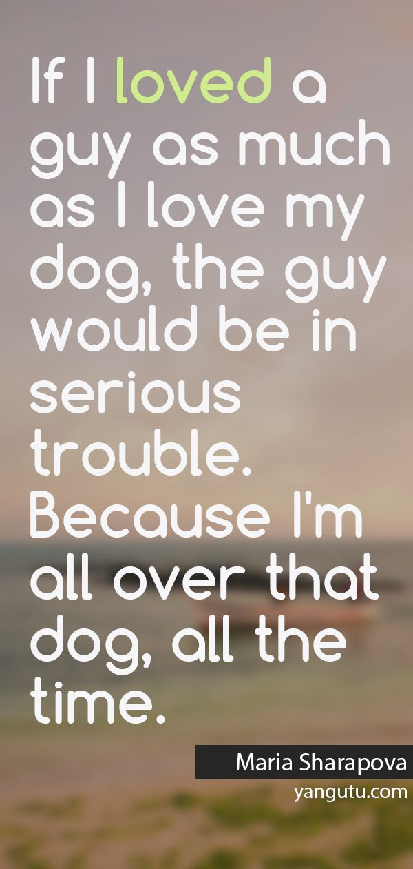 I Love My Dog Quotes Beauteous If I Loved A Guy As Much As I Love My Dog The Guy Would Be In