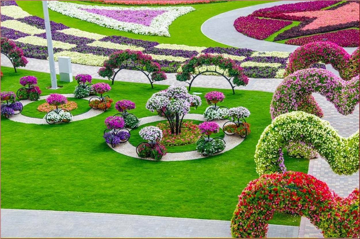 The Most Beautiful And Biggest Natural Flower Garden In The World Dubai Miracle Garden Flower Garden Design Small Flower Gardens Beautiful Flowers Garden