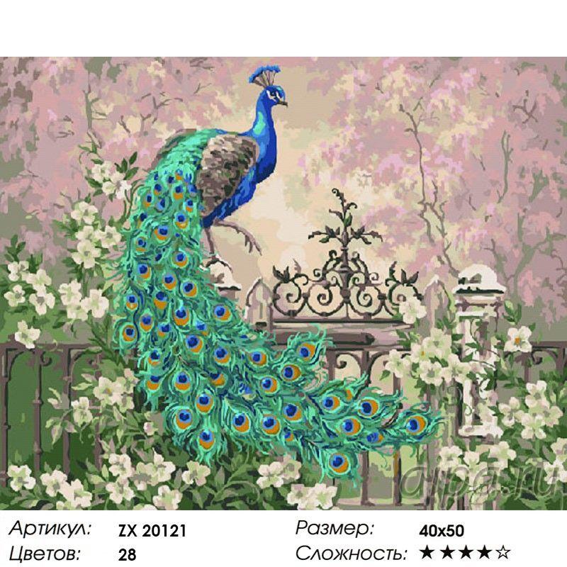 Раскраска по номерам Павлин в саду картина 40х50 см на ...