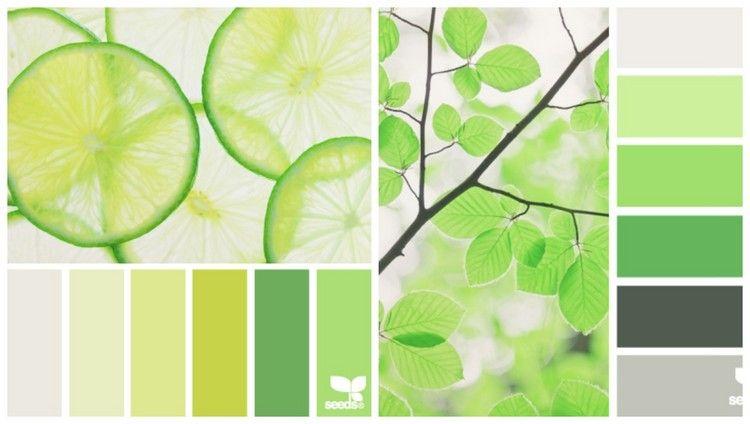 Farbpalette Küche | Farbpalette Fur Kuche Mai Und Limettengrun Farbpalletten