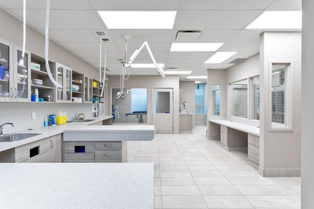 Oak West Vet Clinic Pet clinic, Veterinary clinic