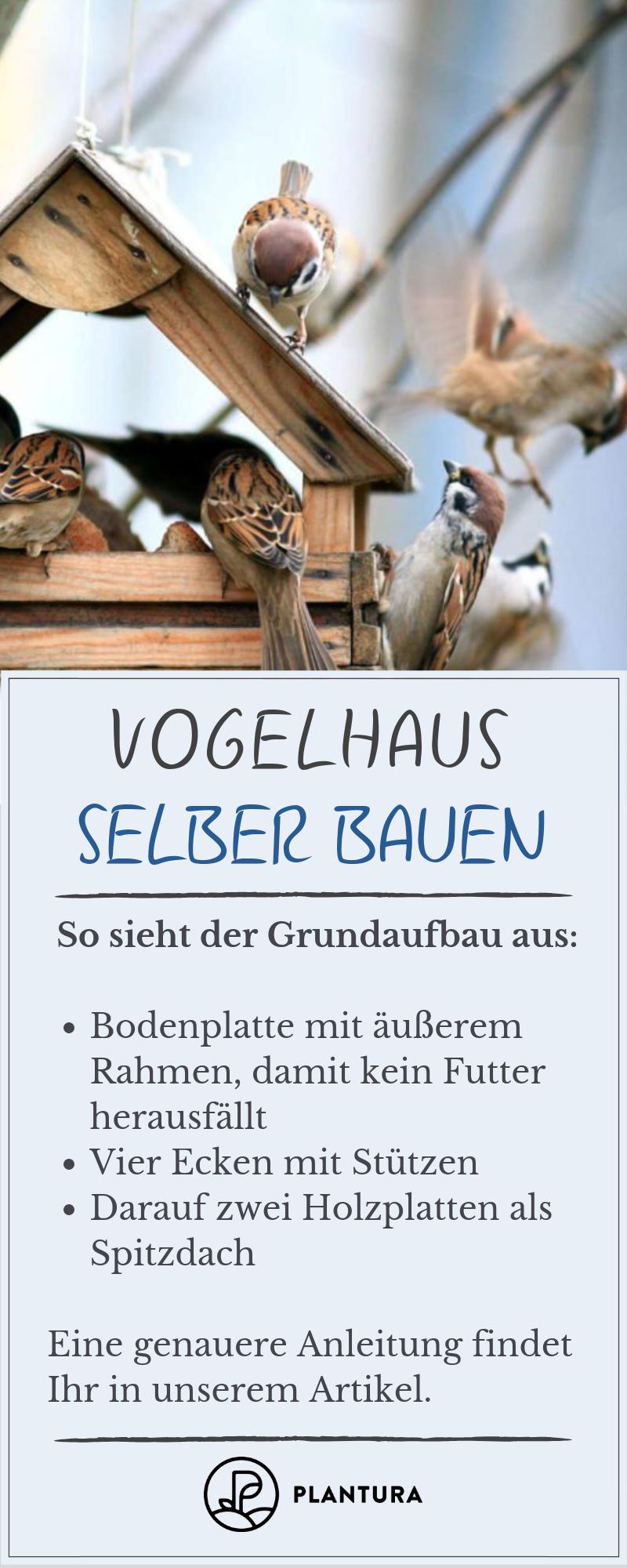 Vogelfutterhaus selber bauen: Anleitung, Ideen & Voraussetzungen #vogelhausbauen