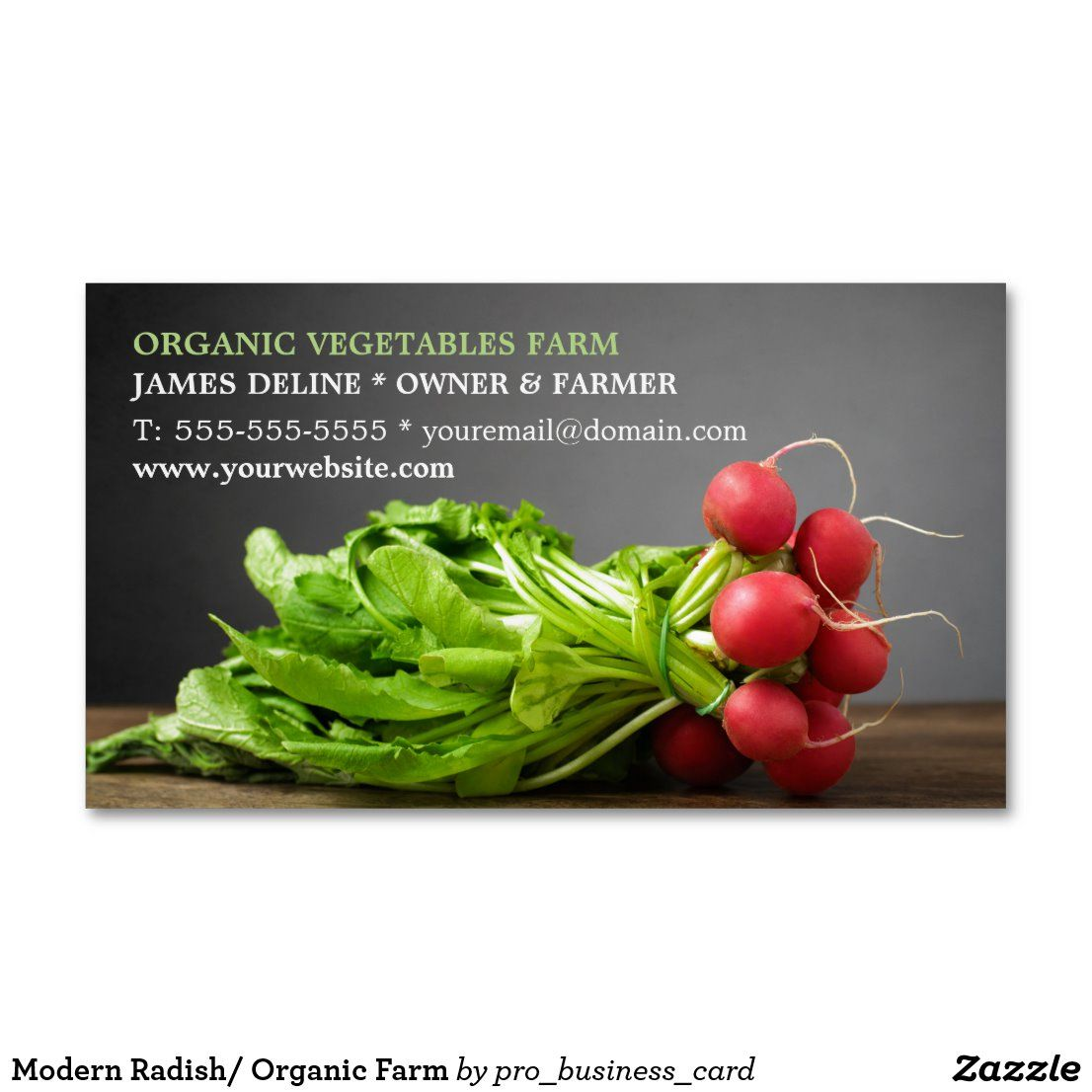 Modern Radish/ Organic Farm Business Card