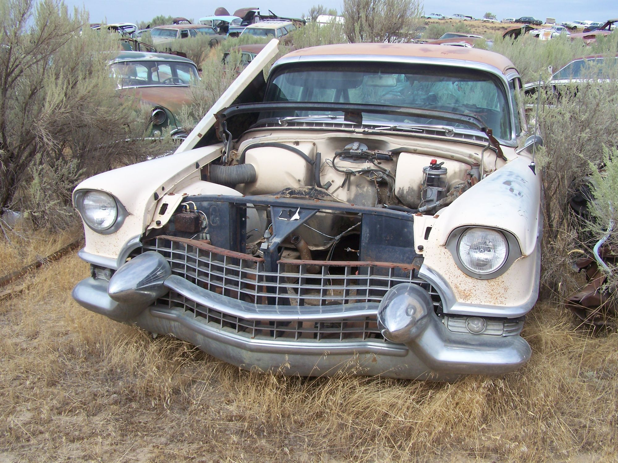 Junkyard tours – 8,000 cars revisited | Cars, Barn finds and ...