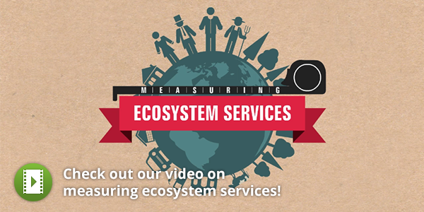 Measuring Ecosystem Services Video Ecosystems Video Movie Posters
