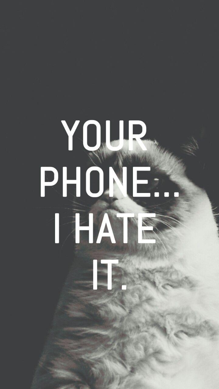 Wallpapers I Love ♡ | Pinterest | Cat Wallpaper, Wallpaper And Grumpy Cat