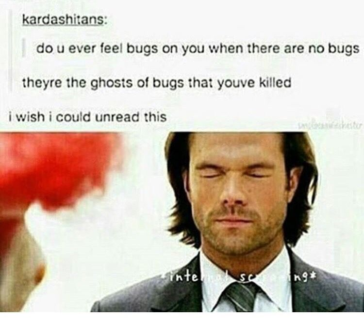 Ghost bugs