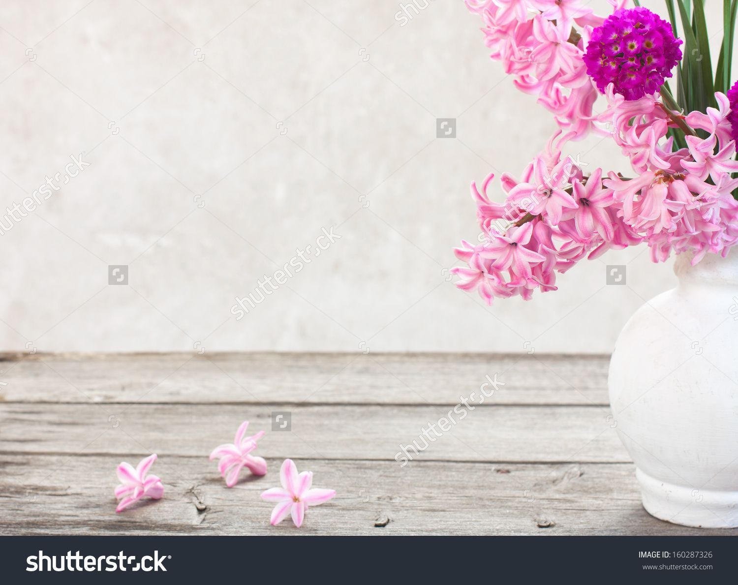 Spring Flowers On White Background 8 Martie Pinterest Spring
