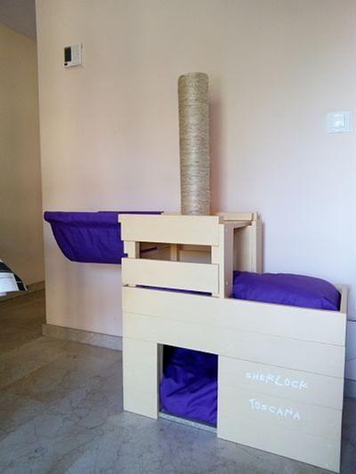 ¿Amante de los gatos? Hazles su propia casa de madera #DIY
