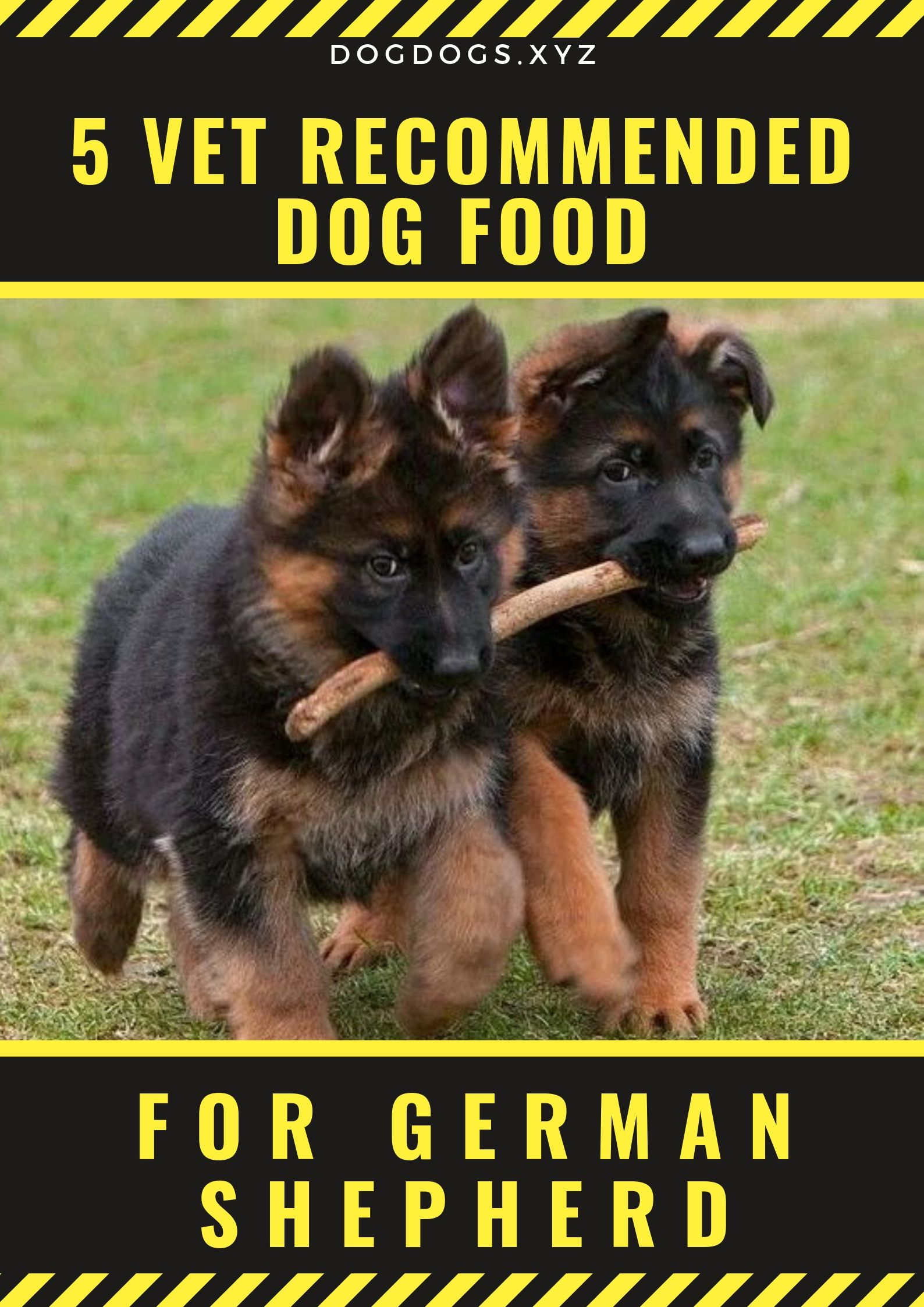 If You Re Looking For A New Diet For Your German Shepherd One Of