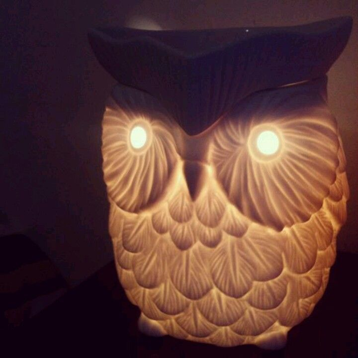 Scentsy Candle Warmer Things I Love Candle Wax Warmer