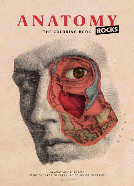 Anatomy Coloring Book Barnes And Nobel