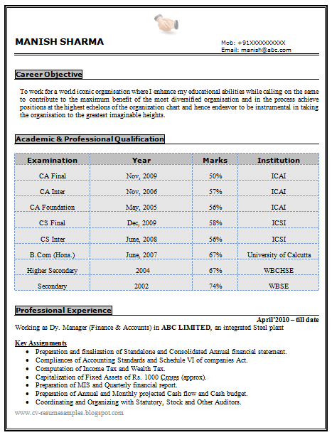 Experienced Chartered Accountant Resume Sample Doc 1