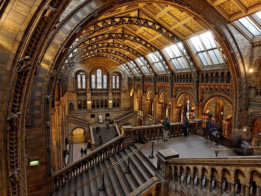 Harry Potter Themed Wedding Natural History Museum London Tour Of Britain London Architecture