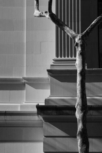 Metropolitan Shadows