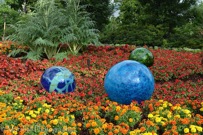 Chihuly at the Dallas Arboretum | Flickr - Photo Sharing!