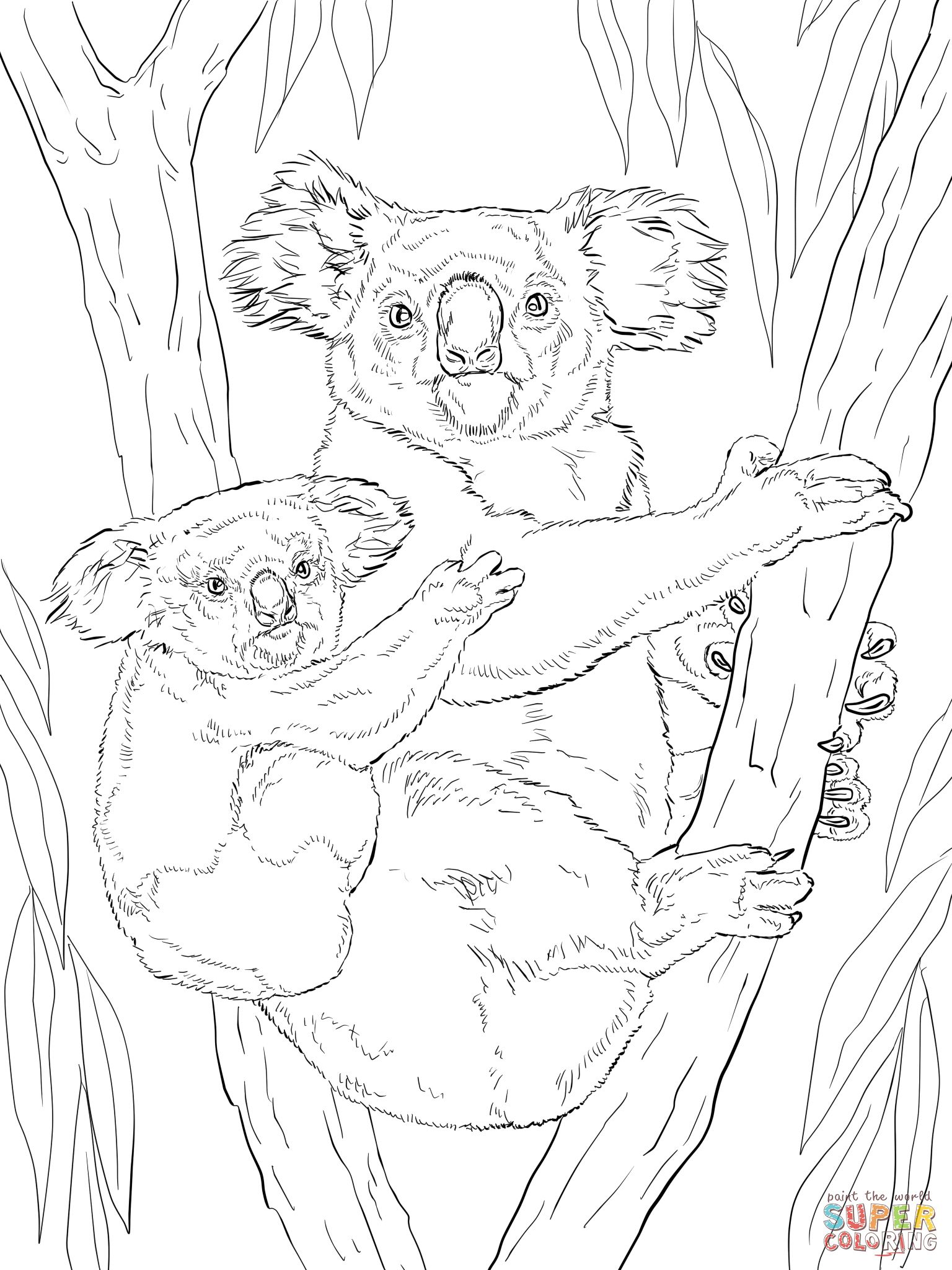 Koala with baby super coloring coloring pages pinterest patterns