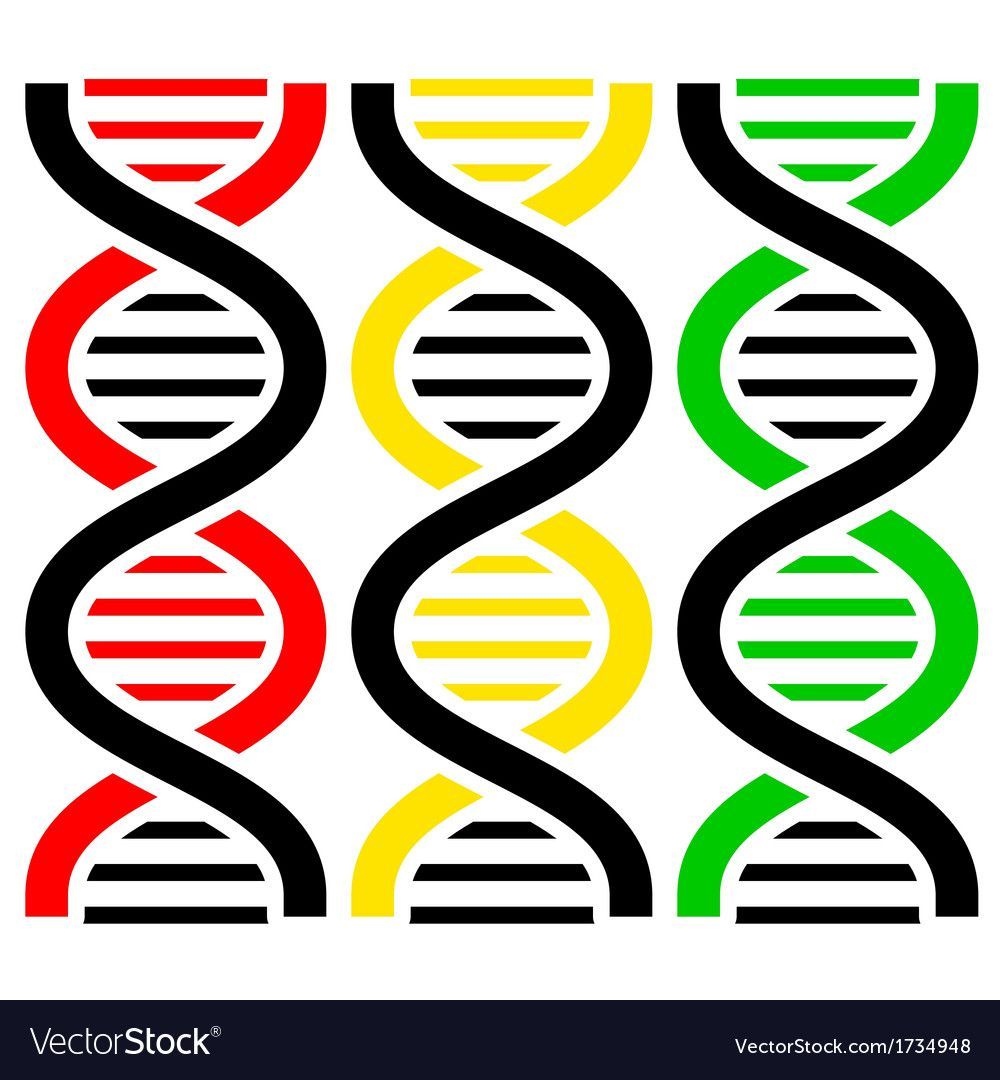 Dna Symbols Download A Free Preview Or High Quality Adobe
