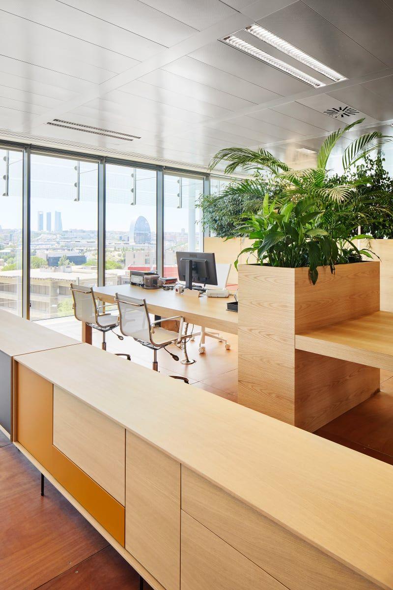 Chemotherapy Room Design: Jorge Vidal, José Hevia · Chemo Offices (com Imagens