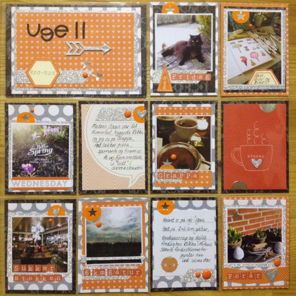Project life week 11 2105