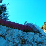 Wandelen+op+Kreta