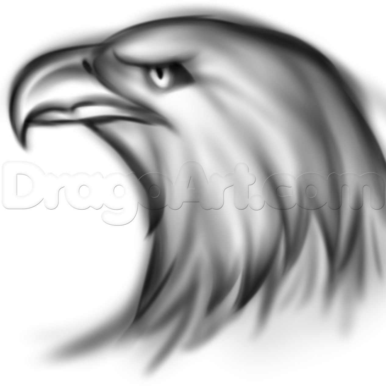 how to draw an eagle spirit step 7 | how to draw | Pinterest | Eagle ...