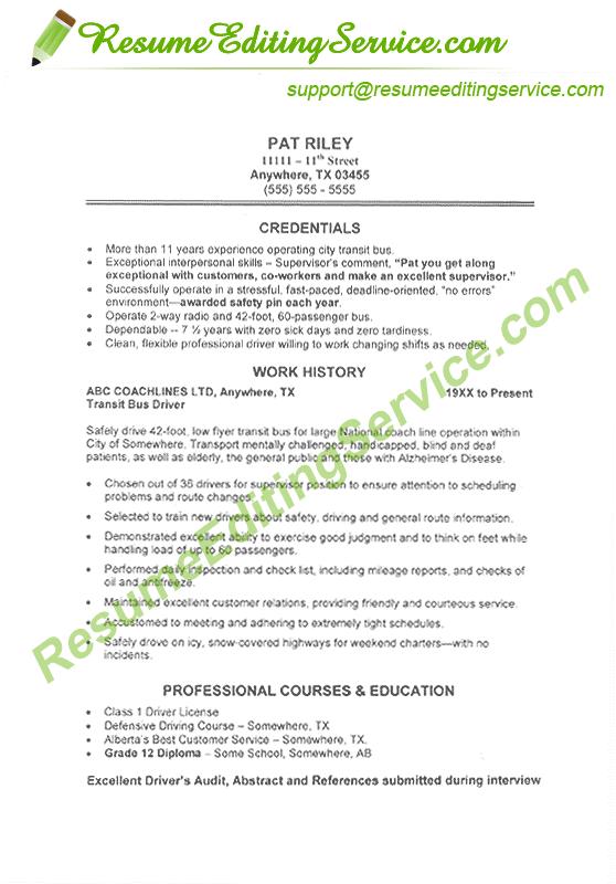 Mini Resume Format Resume Editing Service Job Resume Samples Cv Resume Sample Resume Writing Services