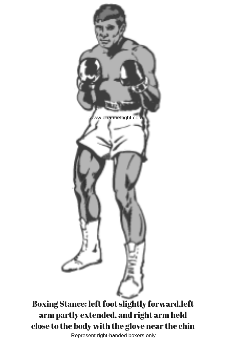 Represent Right Handed Boxers Only Boxing Stance Left Foot Slightly Forward Left Arm Partly Extended And Right Arm Held Close To The Body With The Glove Near