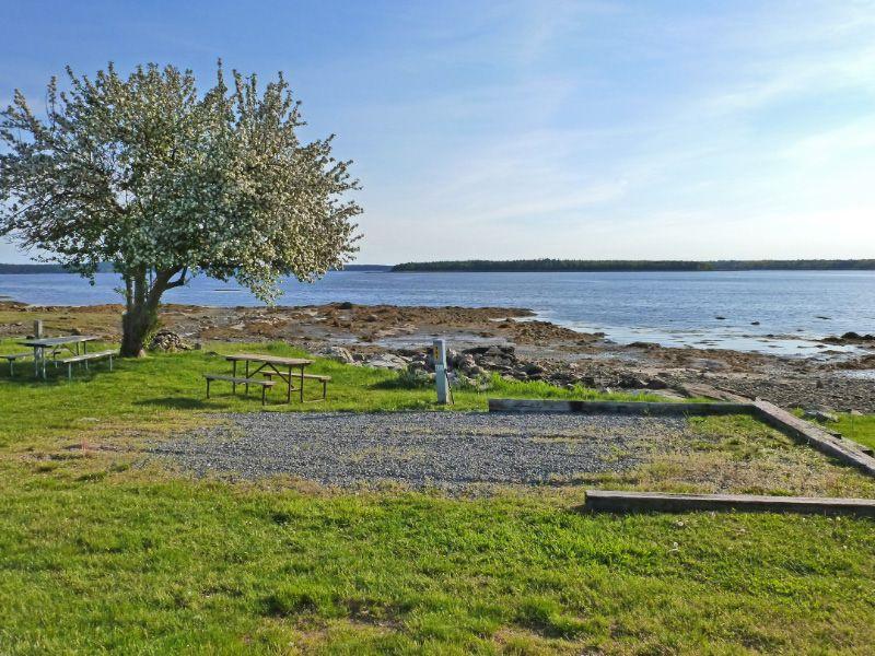 Seaside Camping At Bar Harbor Oceanside Koa In Maine