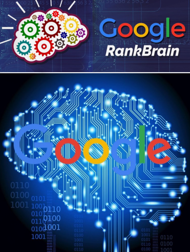 How to Use Google RankBrain in SEO – Dropmk – News