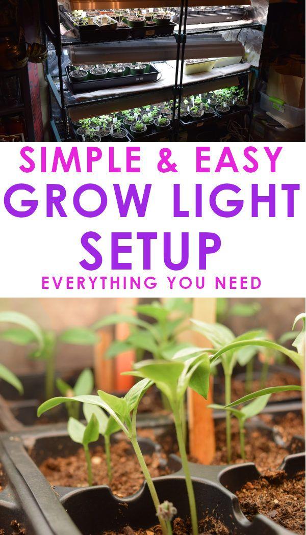 Build Your Own Grow Light System Grow lights, Herbs