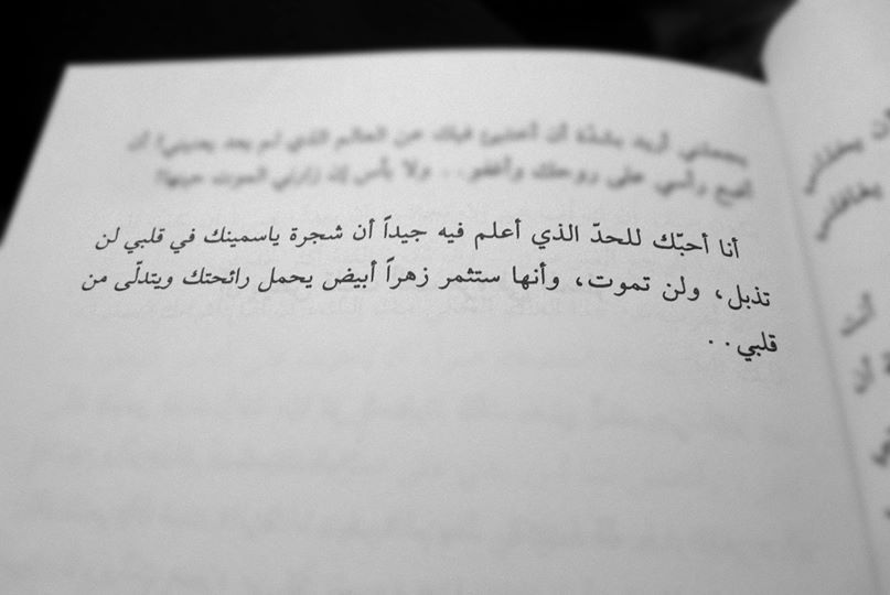 شجرة ياسمينك Book Qoutes Arabic Love Quotes Words Quotes