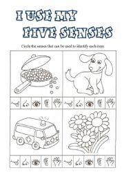 english teaching worksheets the five senses life skills five senses worksheet my five. Black Bedroom Furniture Sets. Home Design Ideas