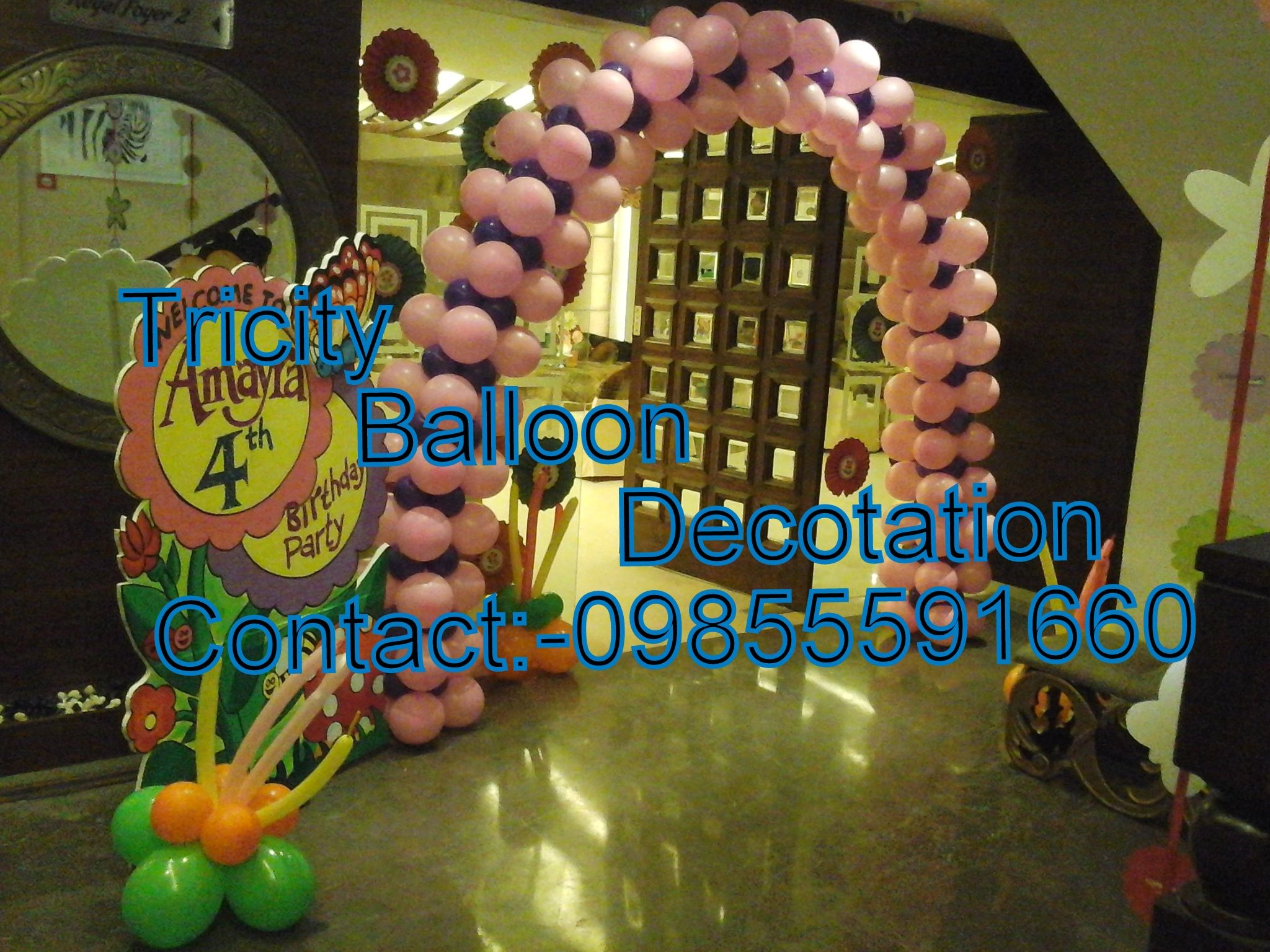 all services in event organizer theme party birthday party school function new opening wedding function jumping