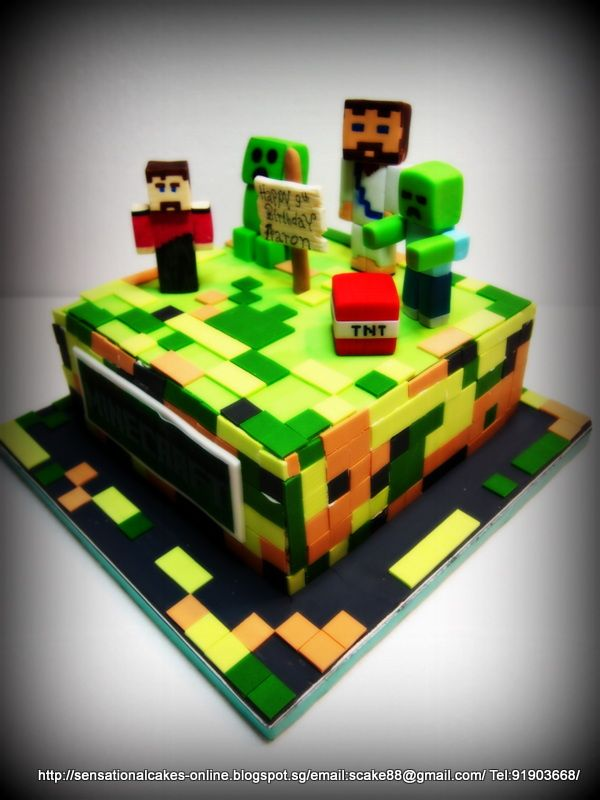 Minecraft Cakes Cakes Online Singapore Minecraft Cake