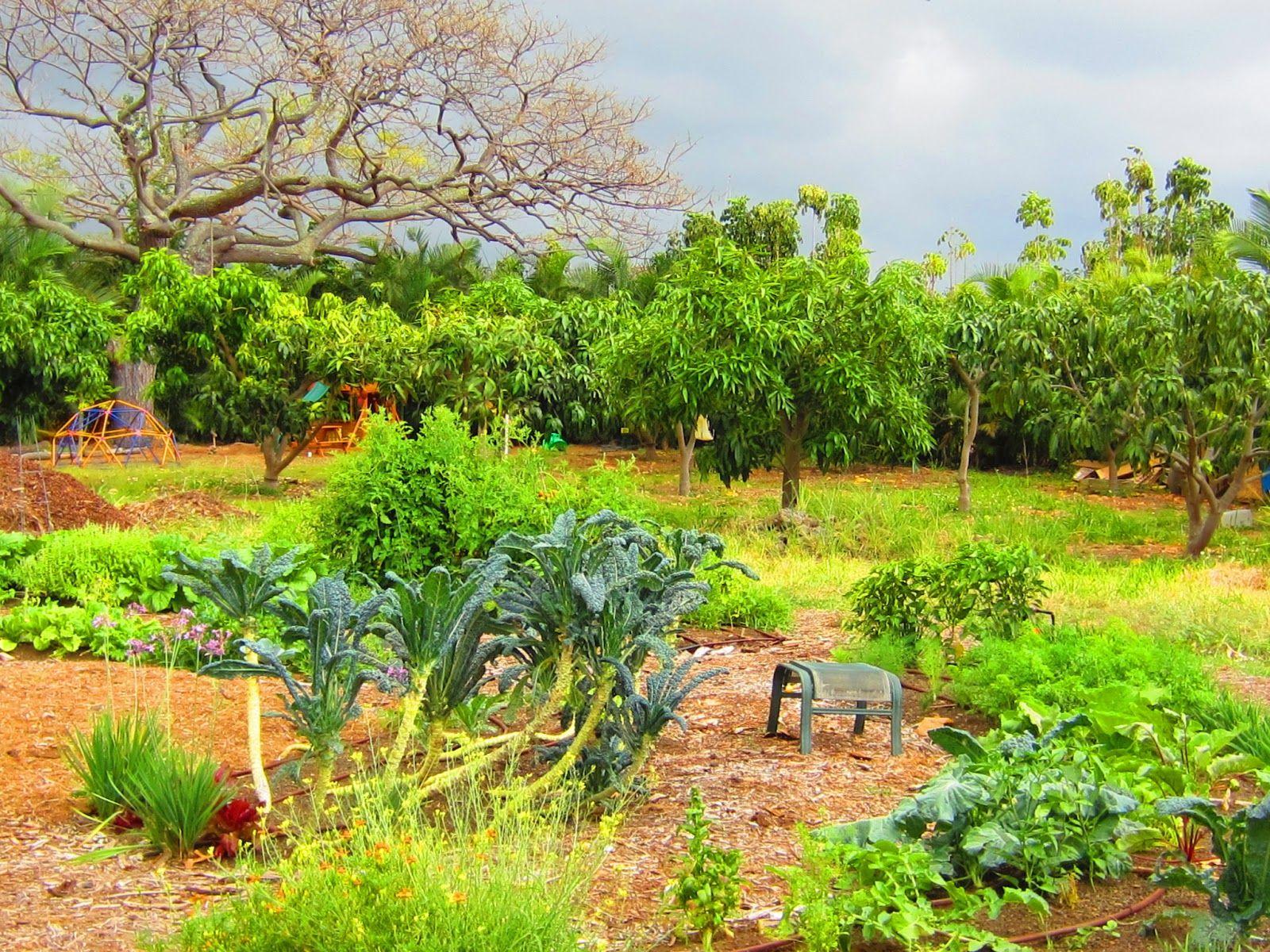 A Garden Is A Teacher S Best Friend Welcome To My