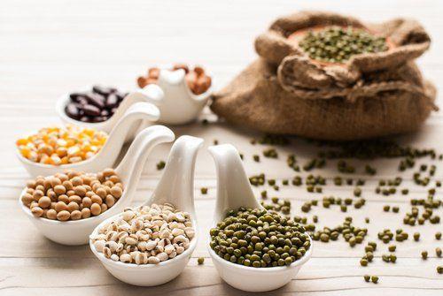 TU SALUD Y BIENESTAR : ¿Cuántas veces deberíamos comer legumbres cada sem...