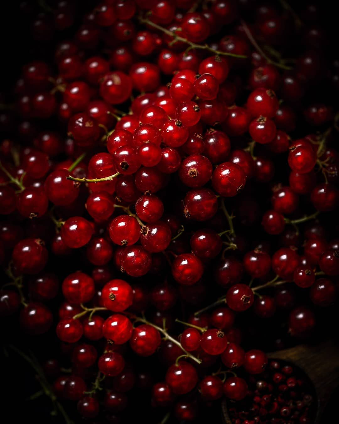 Fresh Red Currants Local Seasonal Food Photography By Boiledbeanstudio In 2020 Seasonal Produce Guide Local Fruit Fruit Plants