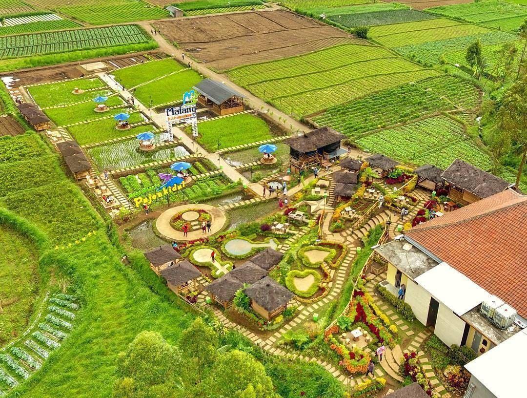 Wisata Kebun Raya Purwodadi Malang