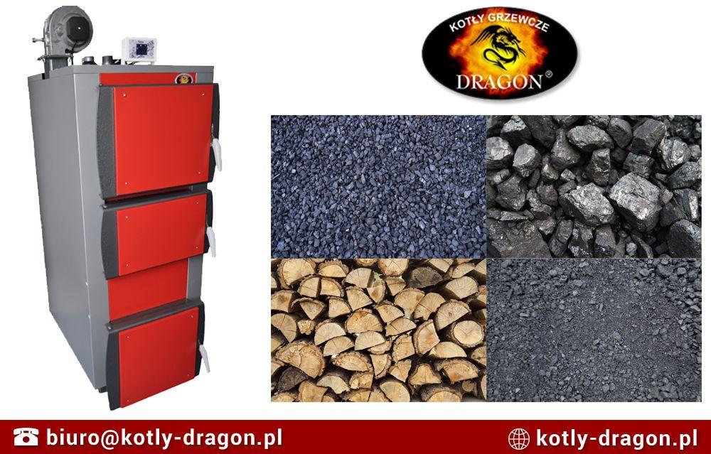 Pin On Kotly Dragon Uni