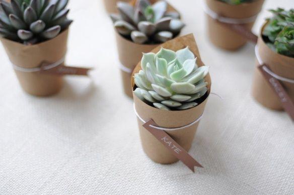 succulents my-june-wedding