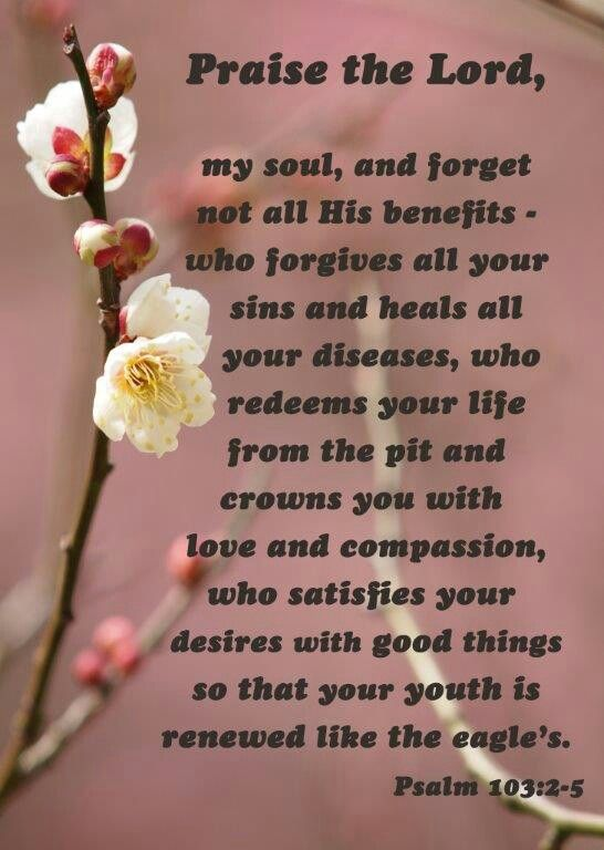 Psalms 103 2 5 Kjv Bless The Lord O My Soul And Forget Not