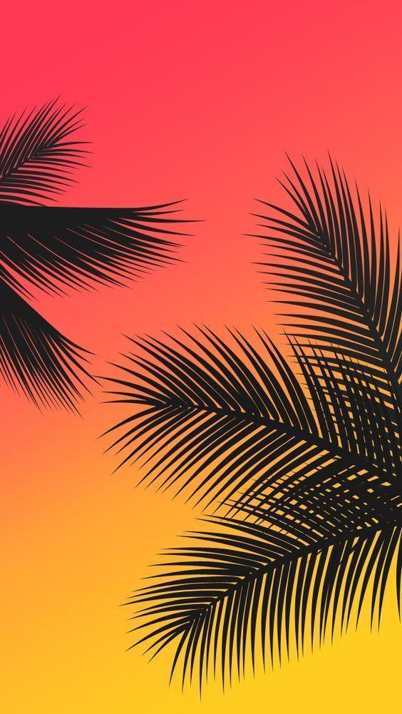 Palm Trees Sunset Wallpaper | EPIC Goods