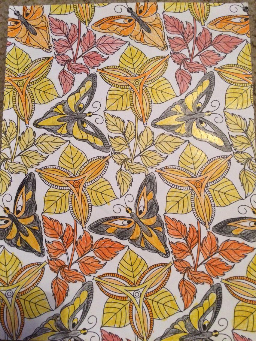 Color art living wonders - Explore Color Art Wonders And More Living Wonder