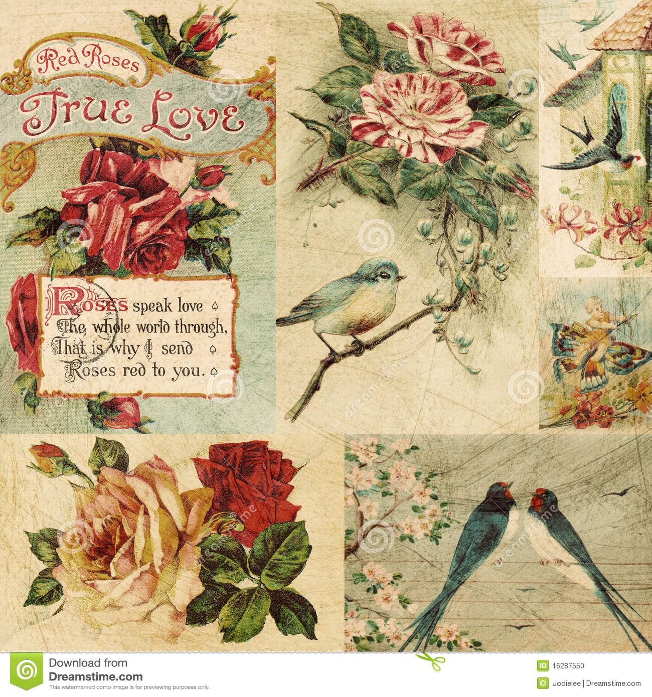 vintage bird and flowers collage background download