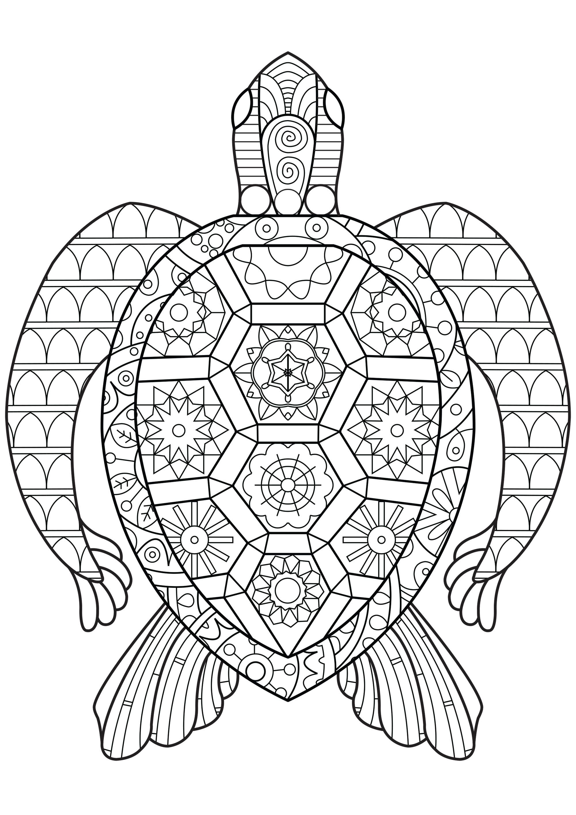 Simple Geometric Turtle Coloring Pages