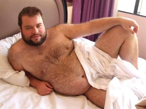 Chubby men bears